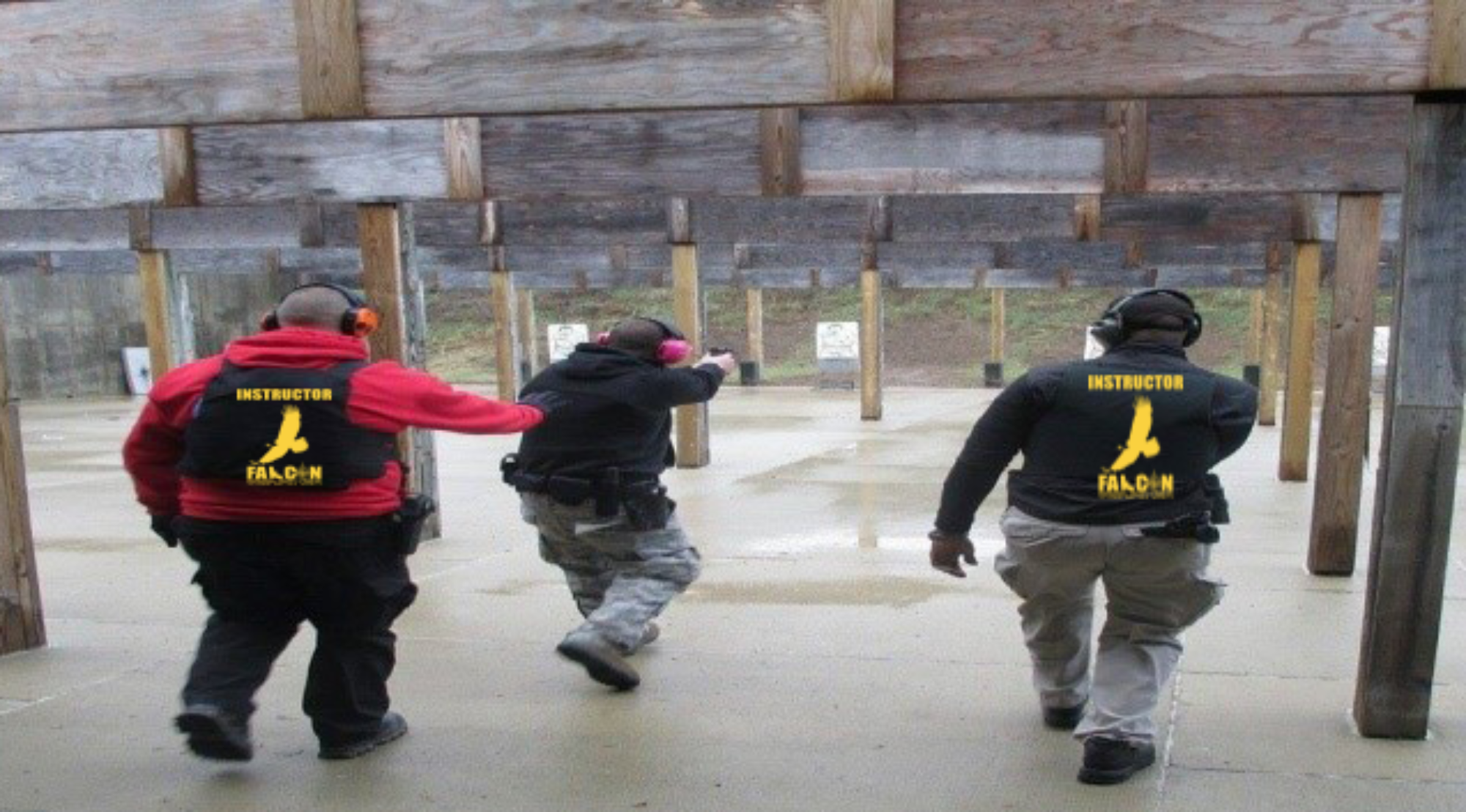 Falcon, Professional Security and Training LLC - Security Services - Private Investigation - DCJS - Self-Defense - Firearms Training - Ballistic Products