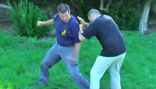 Professional Combat
